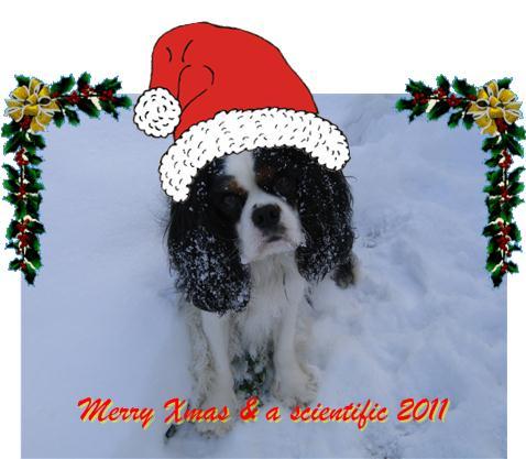 Prettige kerstdagen en een voorspoedig 2011